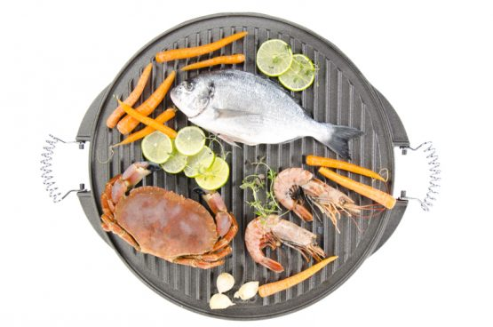 Malmist grillplaat 42 cm